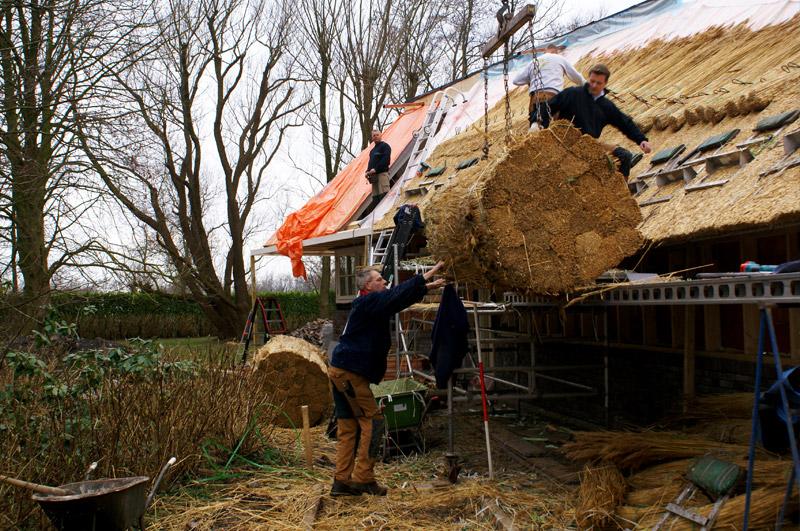 Kosten van een rieten dak in t gooi